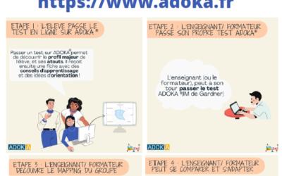 ADOKA LEARNING, l'application pour travailler avec les intelligences multiples au collège et lycée